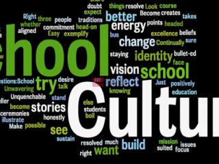 印度现代教育工作者如何改善学校文化