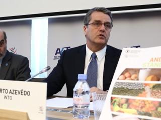 WTO规则下的交易对食品行业意味着什么?