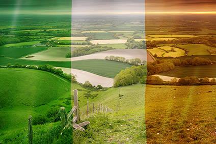 报告显示,英国脱欧后,爱尔兰可能面临食品短缺问题