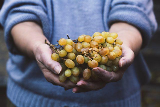 关于全球有机葡萄酒市场的三个事实