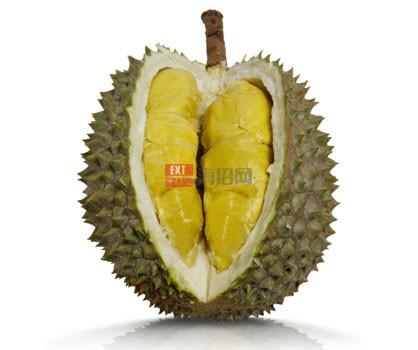 马来西亚新鲜的榴莲果