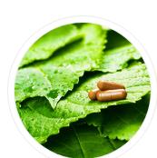 美国营养保健原料及草药