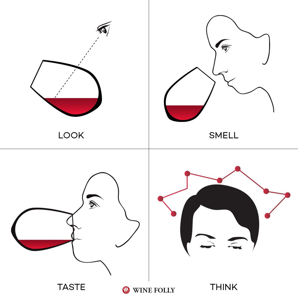 学习如何品尝葡萄酒,开发你的味蕾