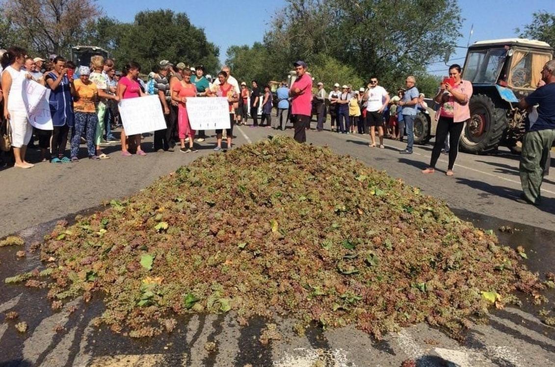 Ukraine winemaker protest