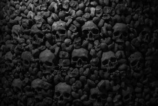 A bunch of skulls.