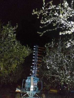 Operation of Edete's artificial pollination system in Israel at night