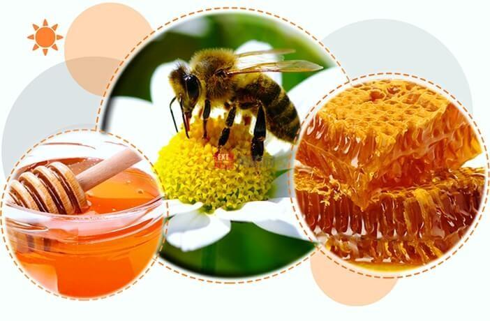 土耳其天然蜂蜜