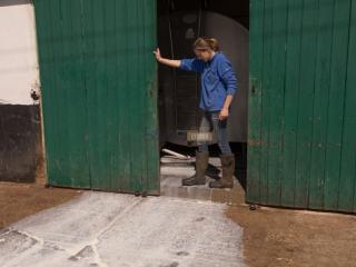 牛奶新闻:由于需求下降,世界各地的奶农处于危机边缘