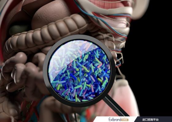 科学家们使用可消化装置来对肠道进行快照