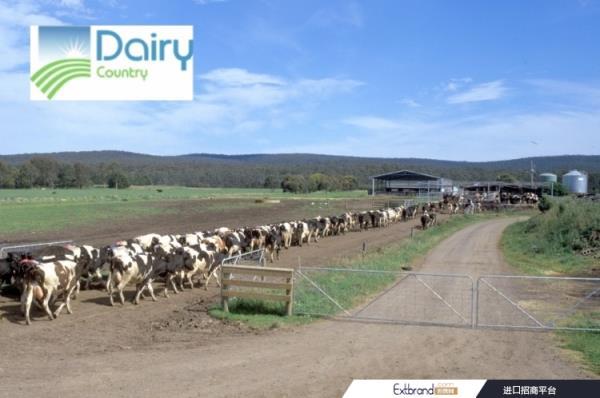恒天然澳大利亚公司通过收购乳制品国家加强奶酪业务
