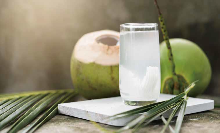 印尼Karta椰子水原味饮料 - 1000ml