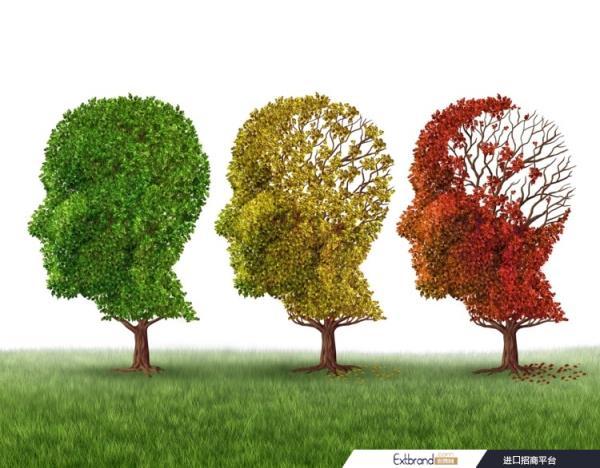 """当归提取物和阿魏酸可能对轻度认知障碍""""有用"""":研究"""