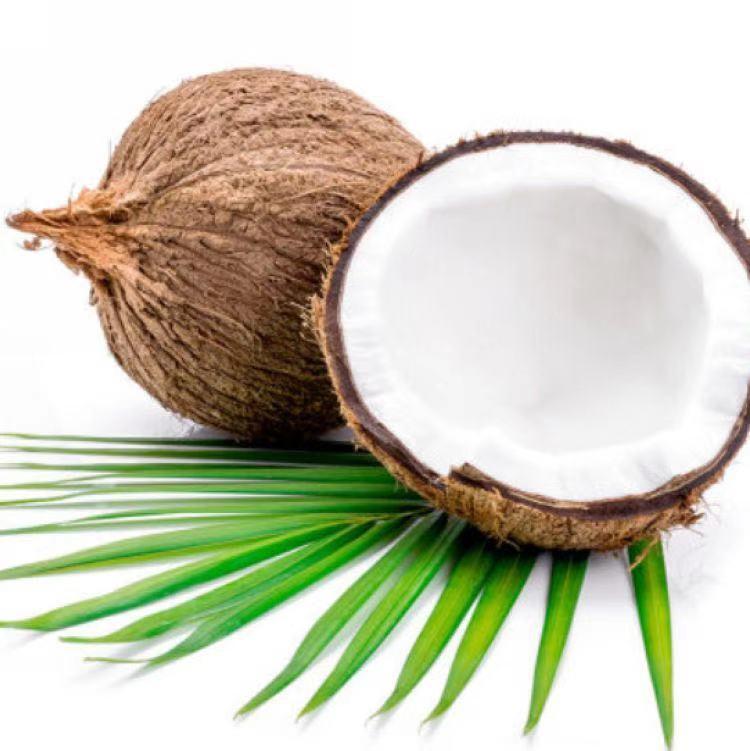 越南进口老椰子果肉
