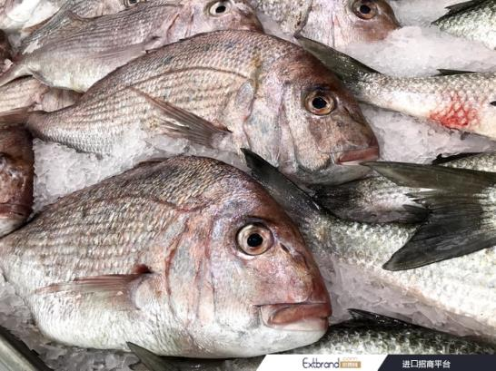 Study finds <d>about</d> 20% of fish in Taiwan are mislabelled, snapper most prone to fraud ?Getty Images