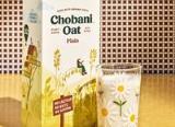 chobani oat plain
