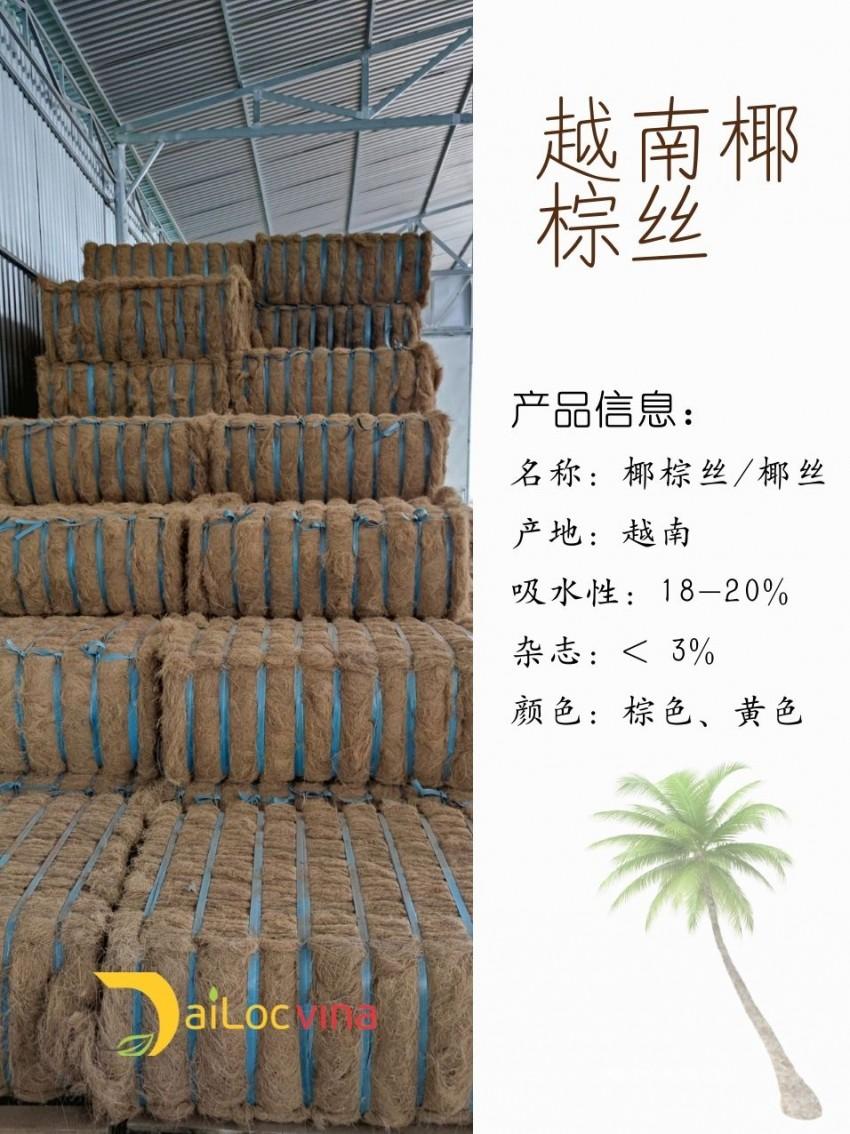 便-宜-的-椰-棕-丝 (4)