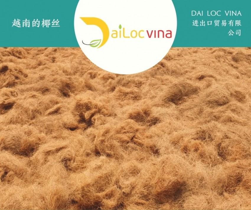 越南的椰丝 (5)