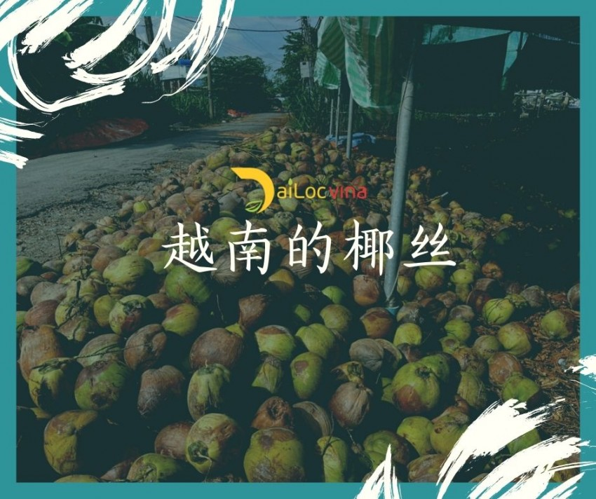 越南的椰丝 (2)