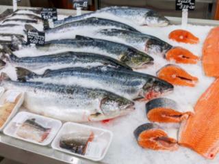 海产品养殖你需要知道的6件事