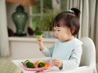 """关注营养的教育营销可以帮助""""脆弱的""""蹒跚学步的儿童弥补微量营养素的不足"""